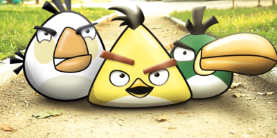 the_real_life_angry_birds__2_by_nikitabirds-d5b24q7